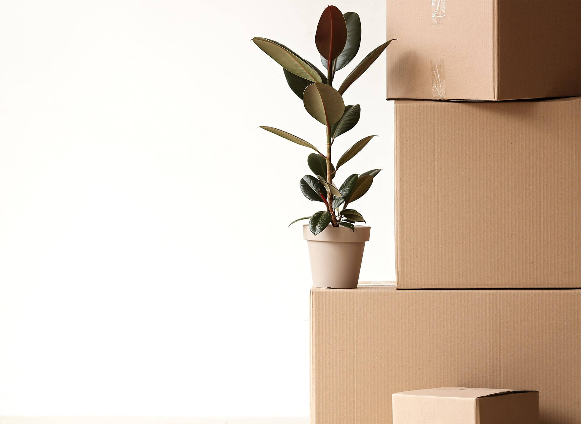 8 things to do after you move into your new home - Things to do when moving into a new house ...